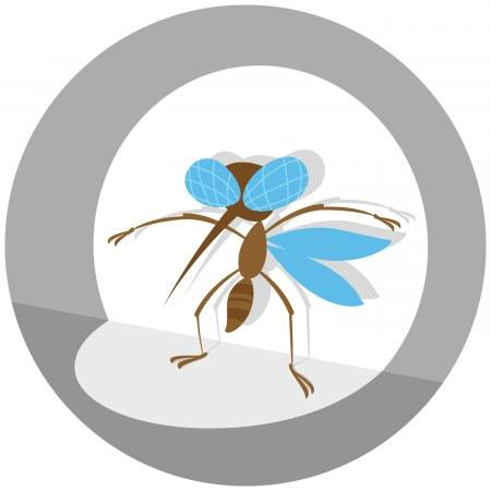 Реєстрація активності комарів
